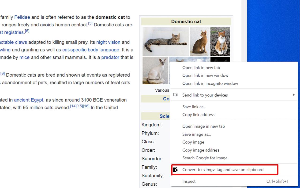 Screenshot from of the context menu